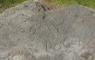 Gravure sur le bord du lac (29/07/1867 ?)
