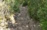 Chemin revenant sur les basses gorges du verdon